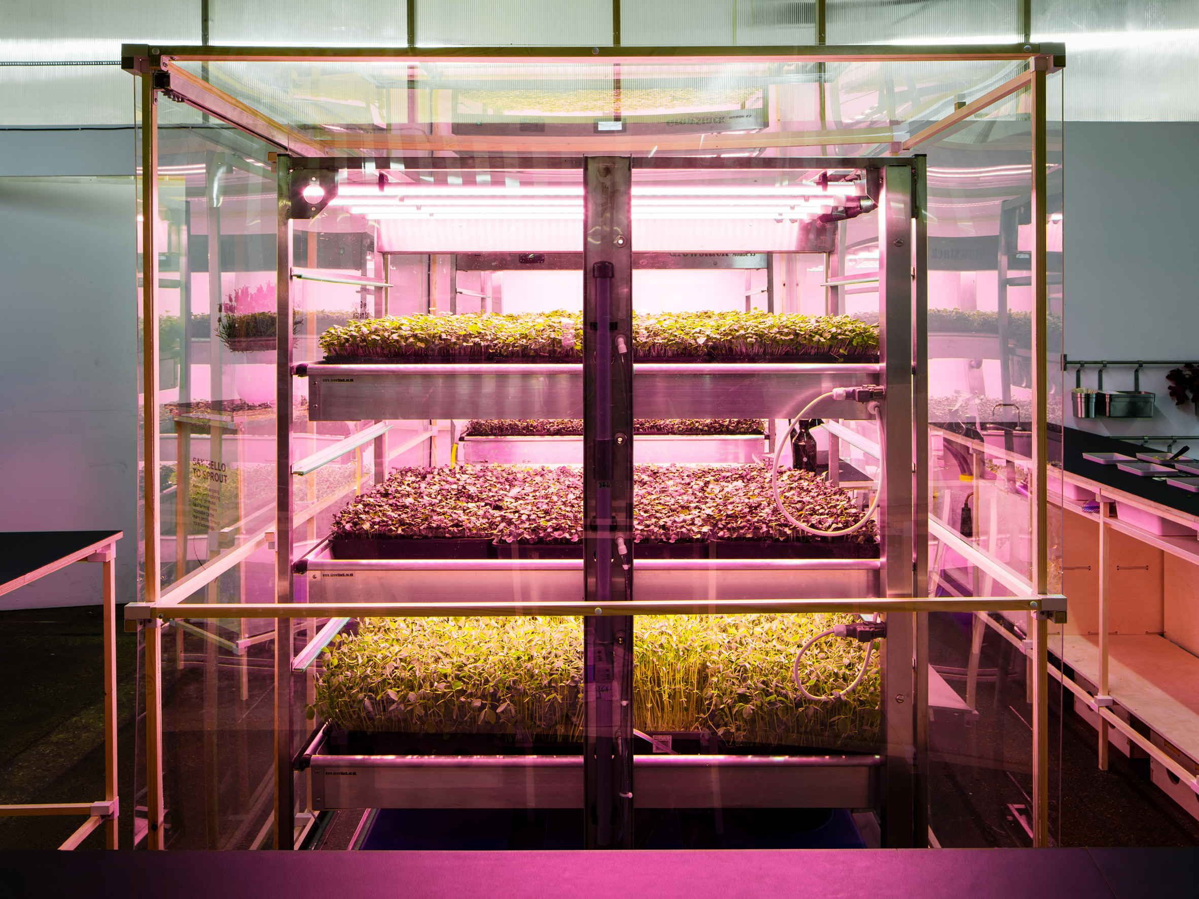 IKEA lab Space10 creates pop-up hydroponic farm for growing extra-healthy salads