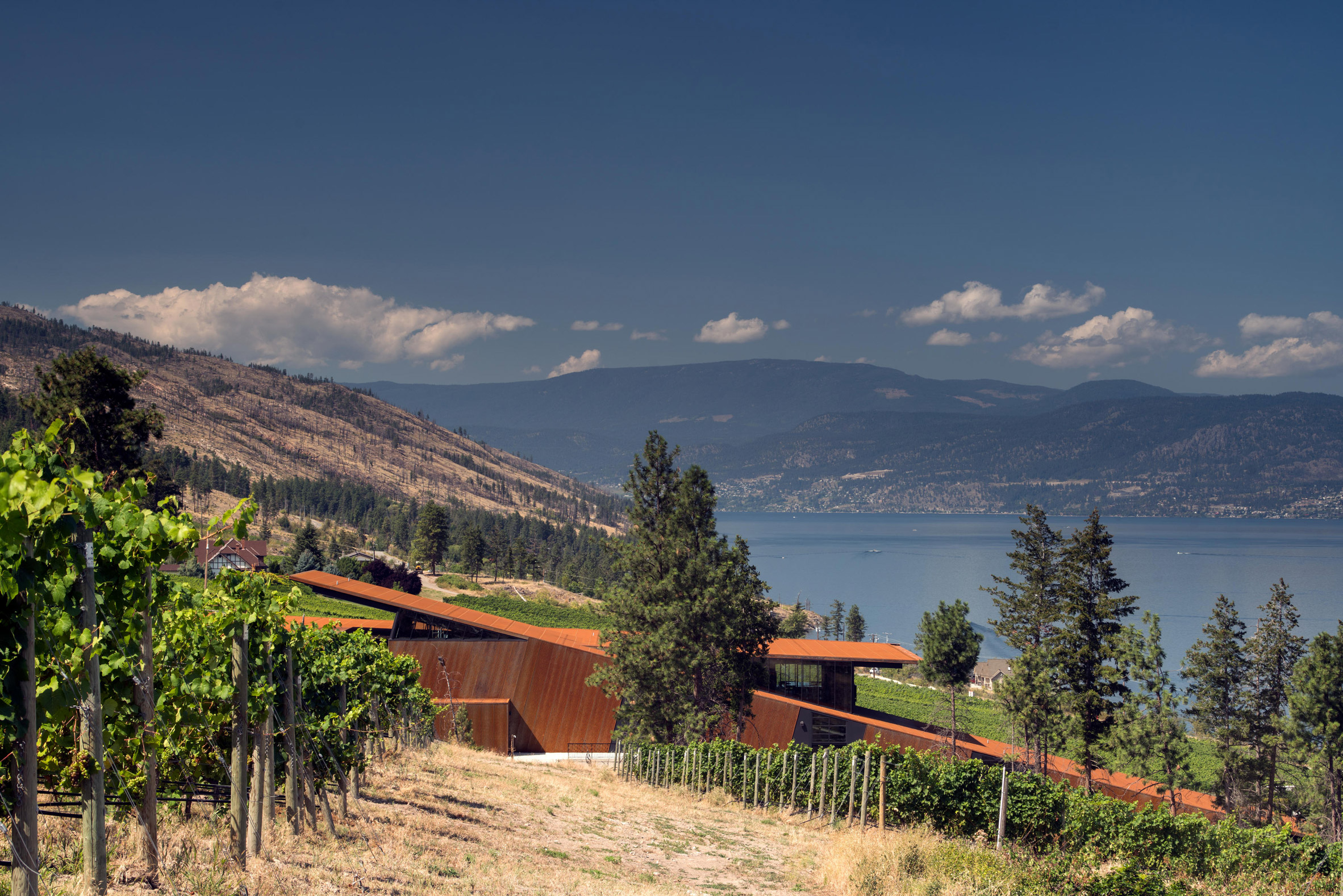 Olson Kundig embeds gravity-flow winery into British Columbia hillside