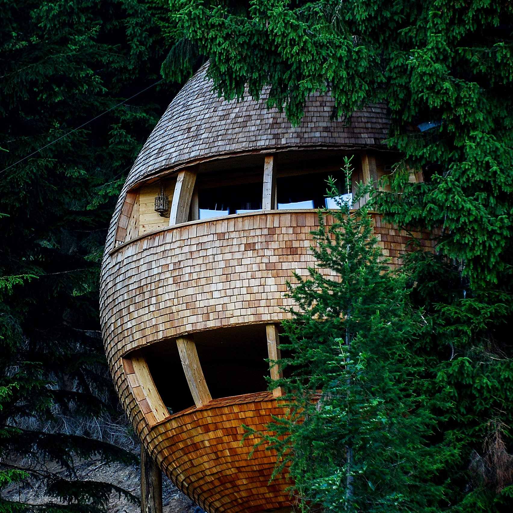 pinecone shaped treehouse allows visitors to sleep under the stars - Treehouse