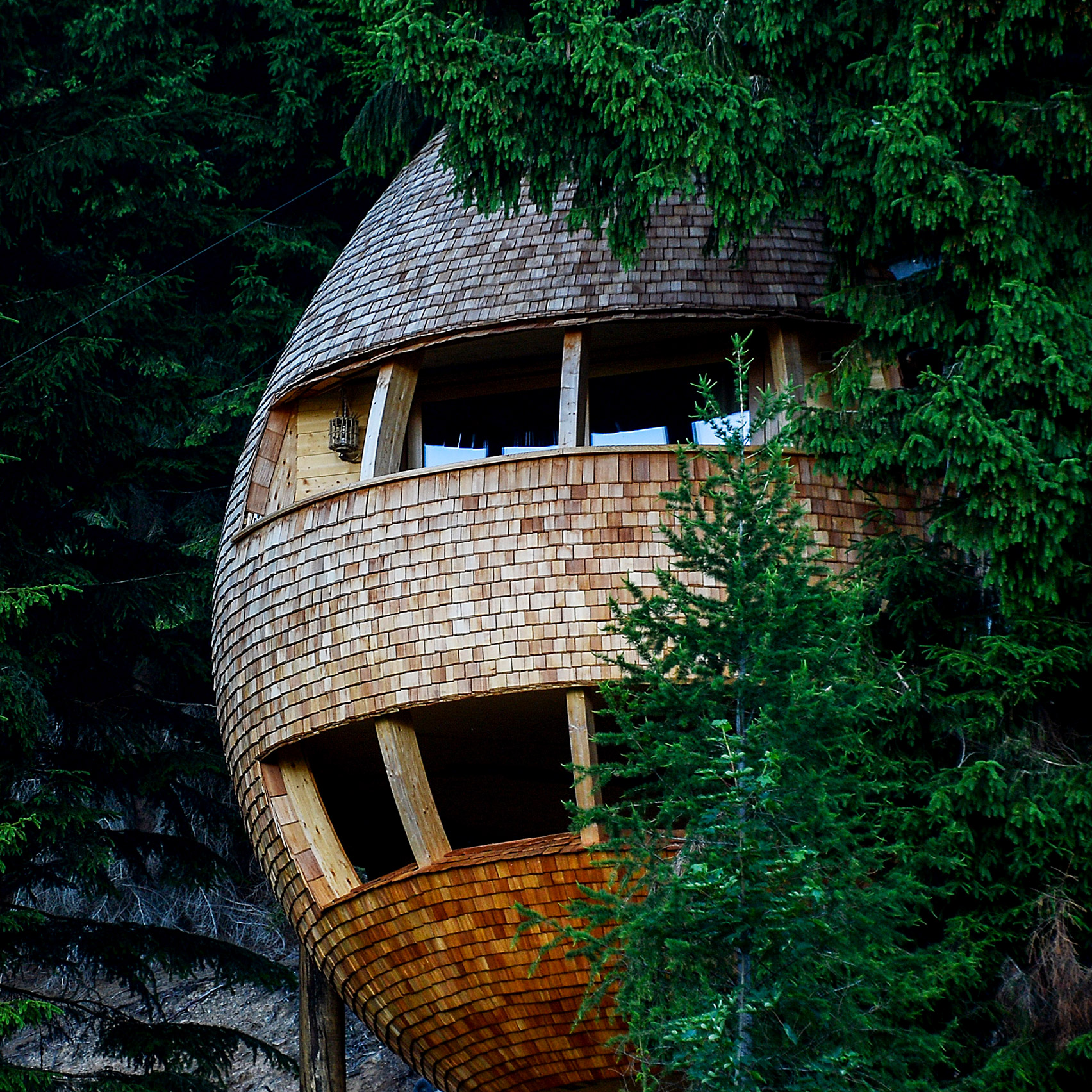 Pinecone Shaped Treehouse Allows Visitors To Sleep Under The Stars