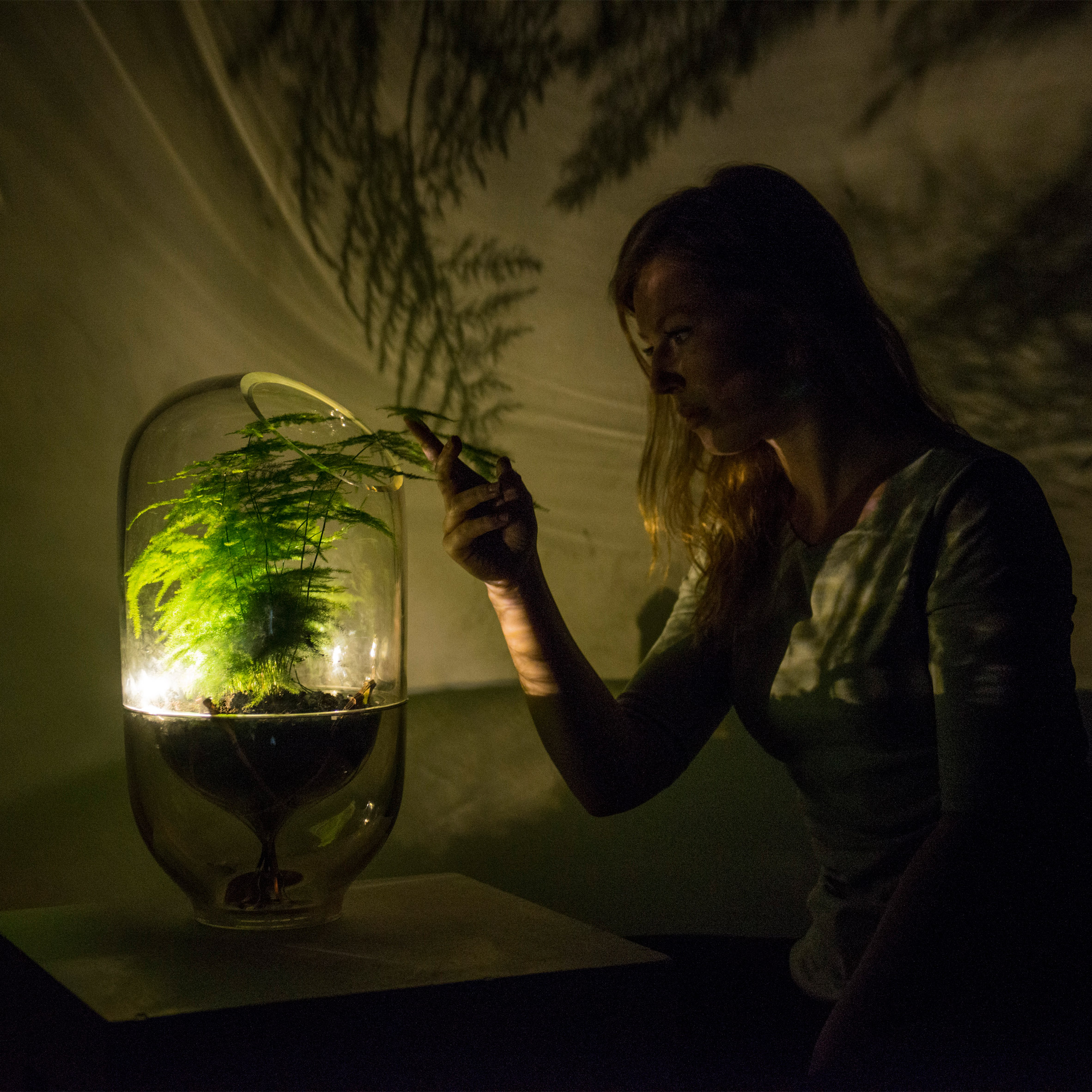 Living Light is an off-grid lamp powered by photosynthesis