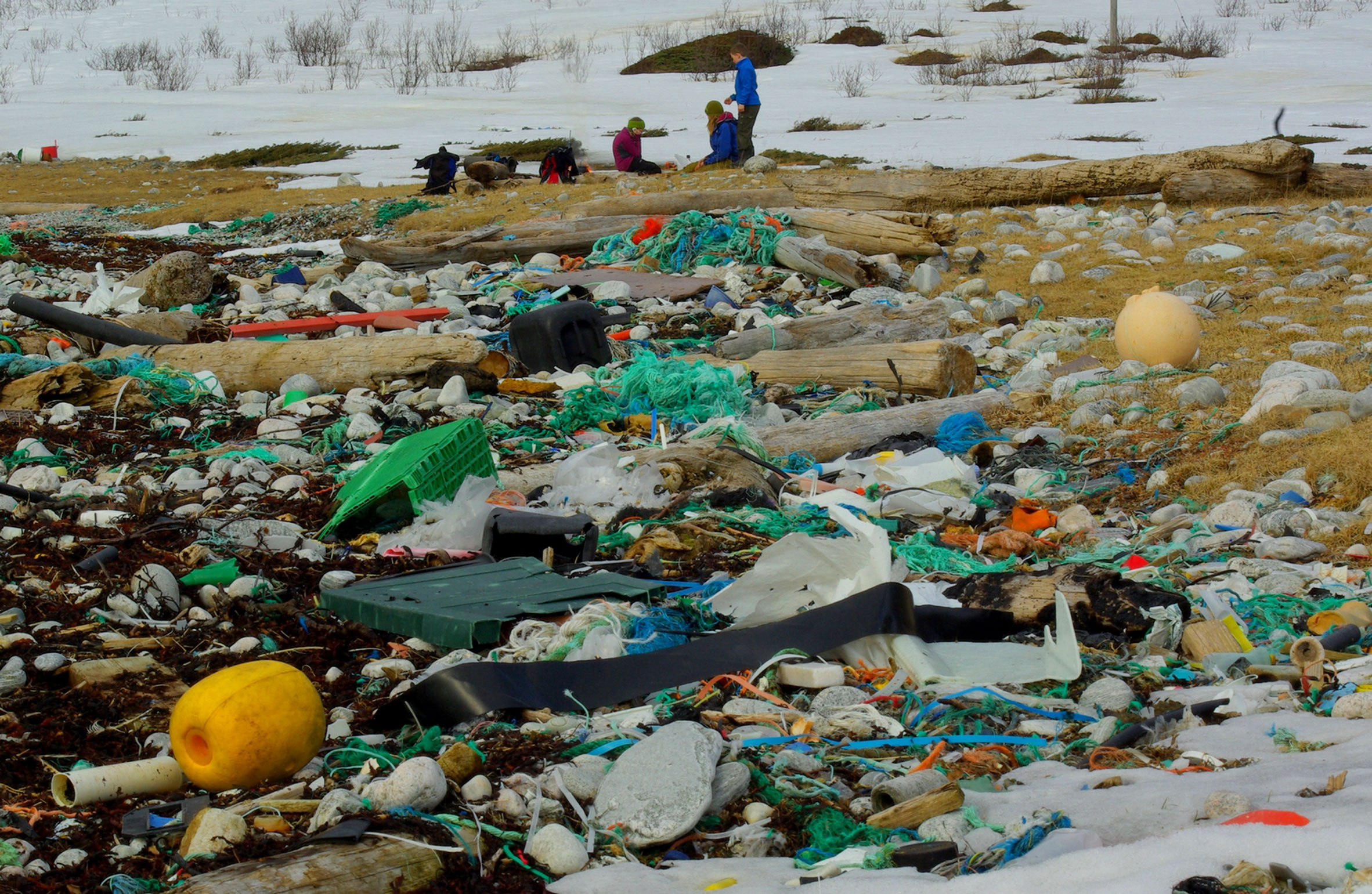 """Recycled plastic """"will soon be the only choice"""""""