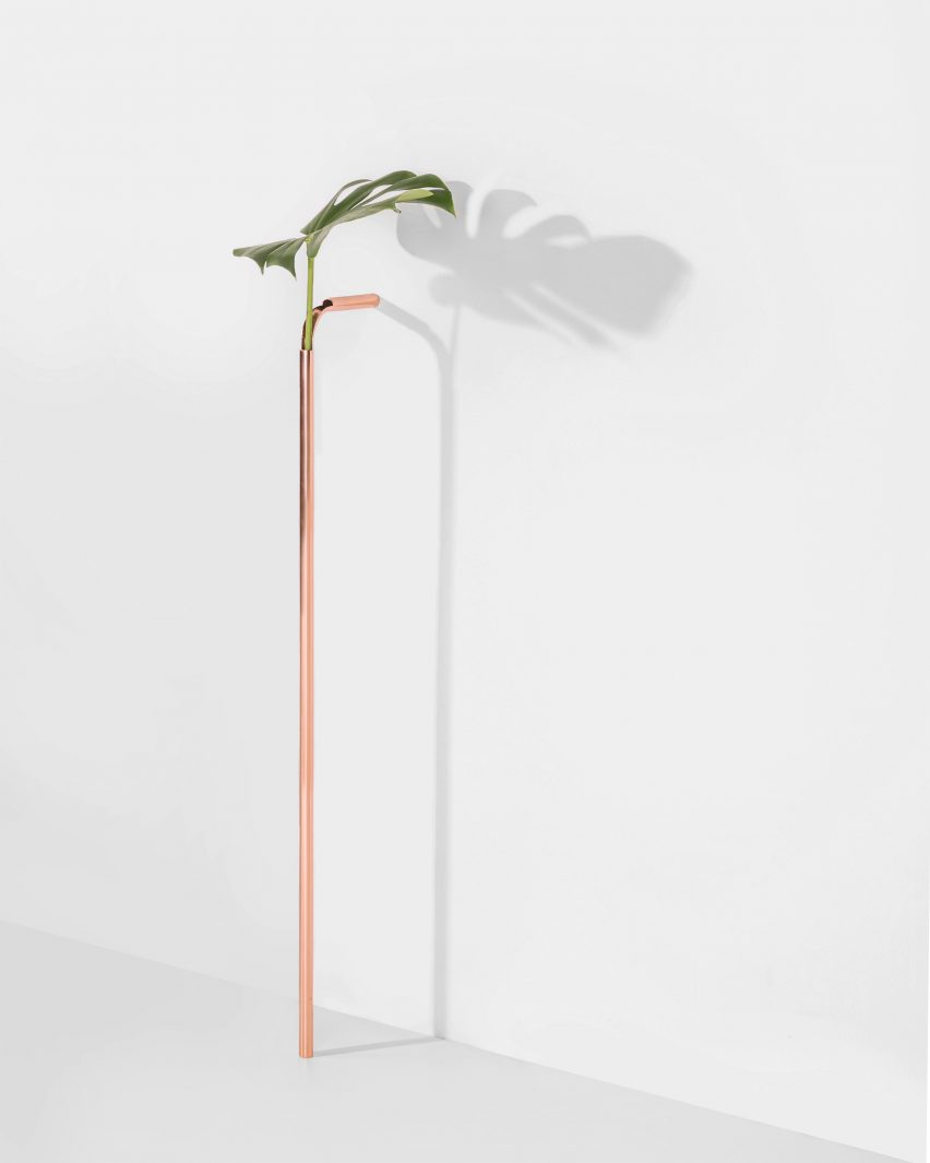 Solo Vases in Chapter 2 by Guilherme Wentz
