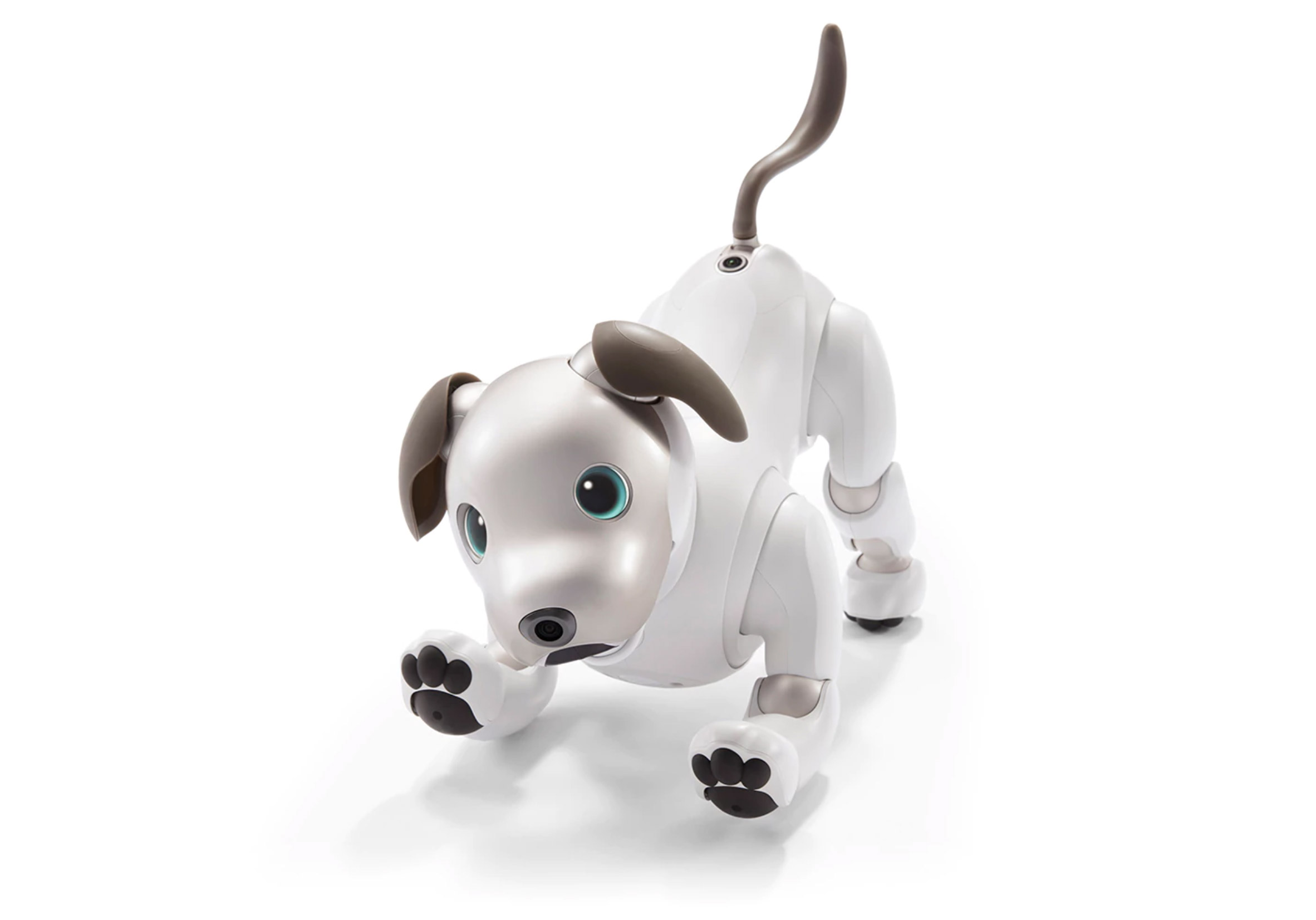 Sony uses artificial intelligence to bring Aibo robot dog back to life