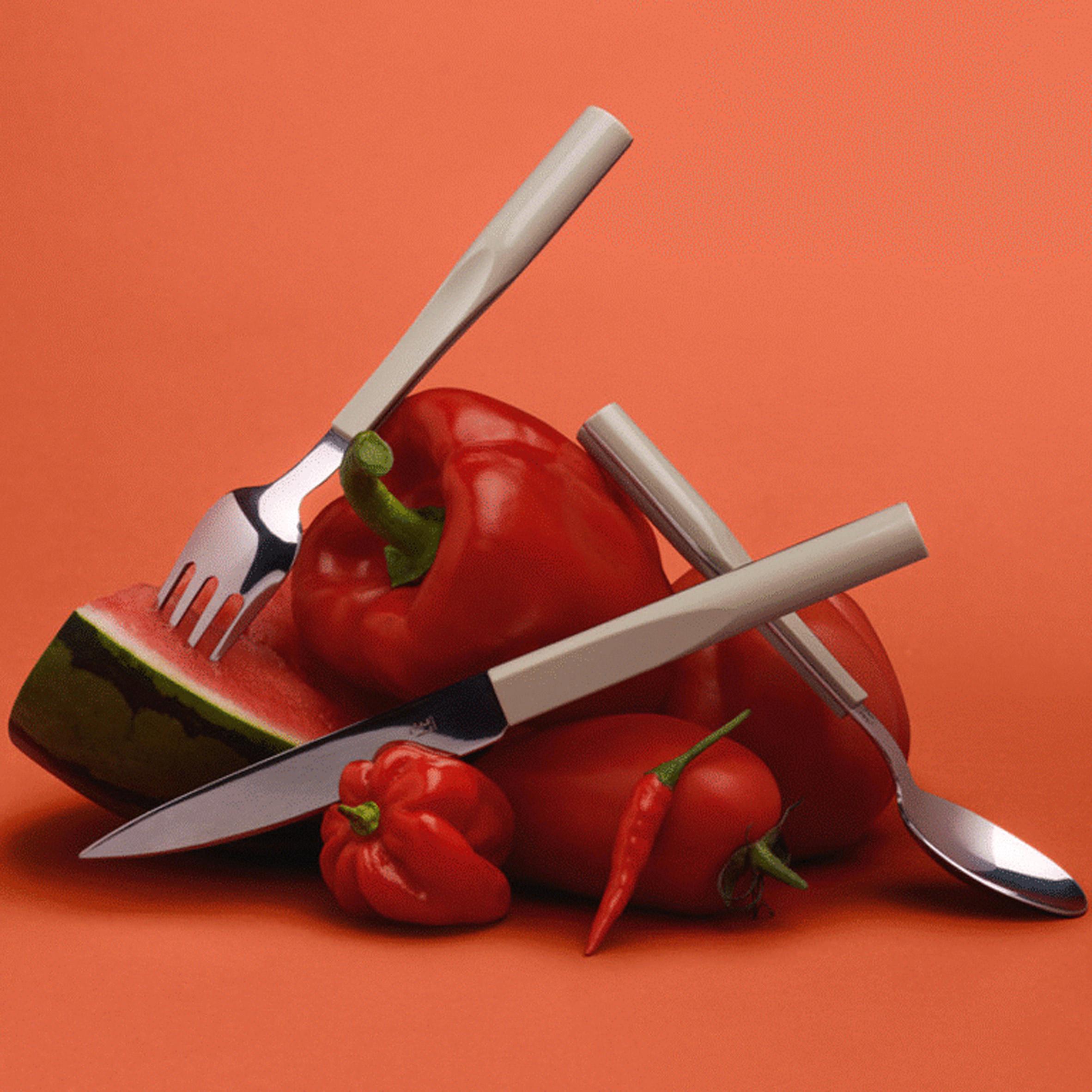 Philippe starck designs range of cutlery for degrenne for Starck philippe