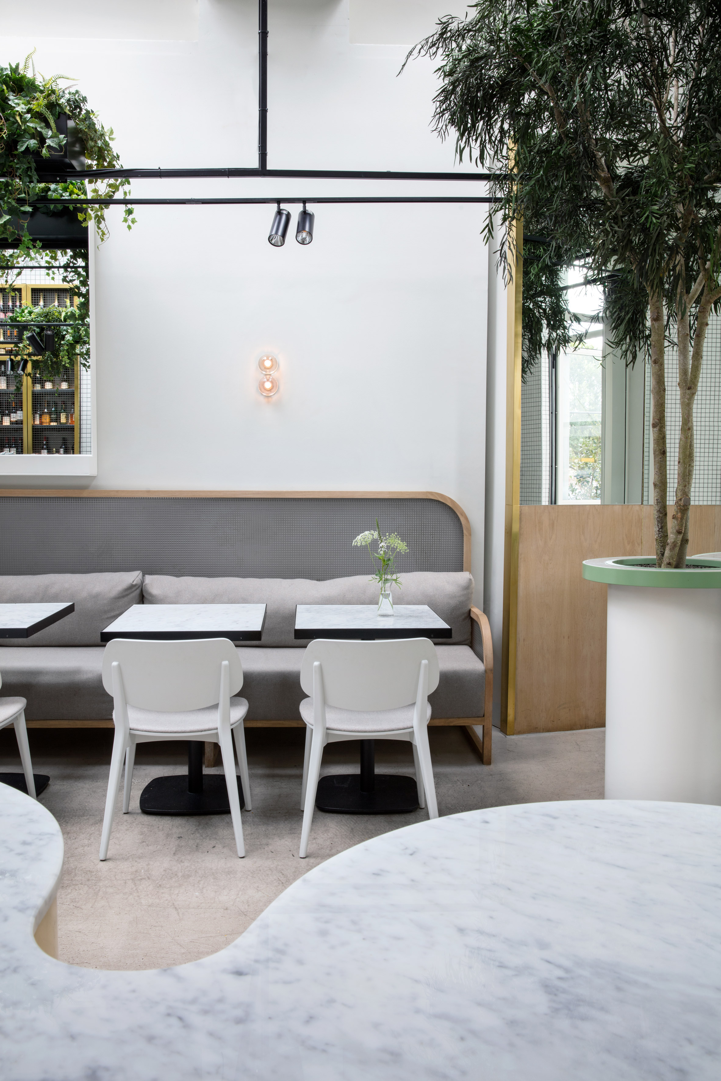 Stella Collective insert a tropical canopy into a Brighton cafe