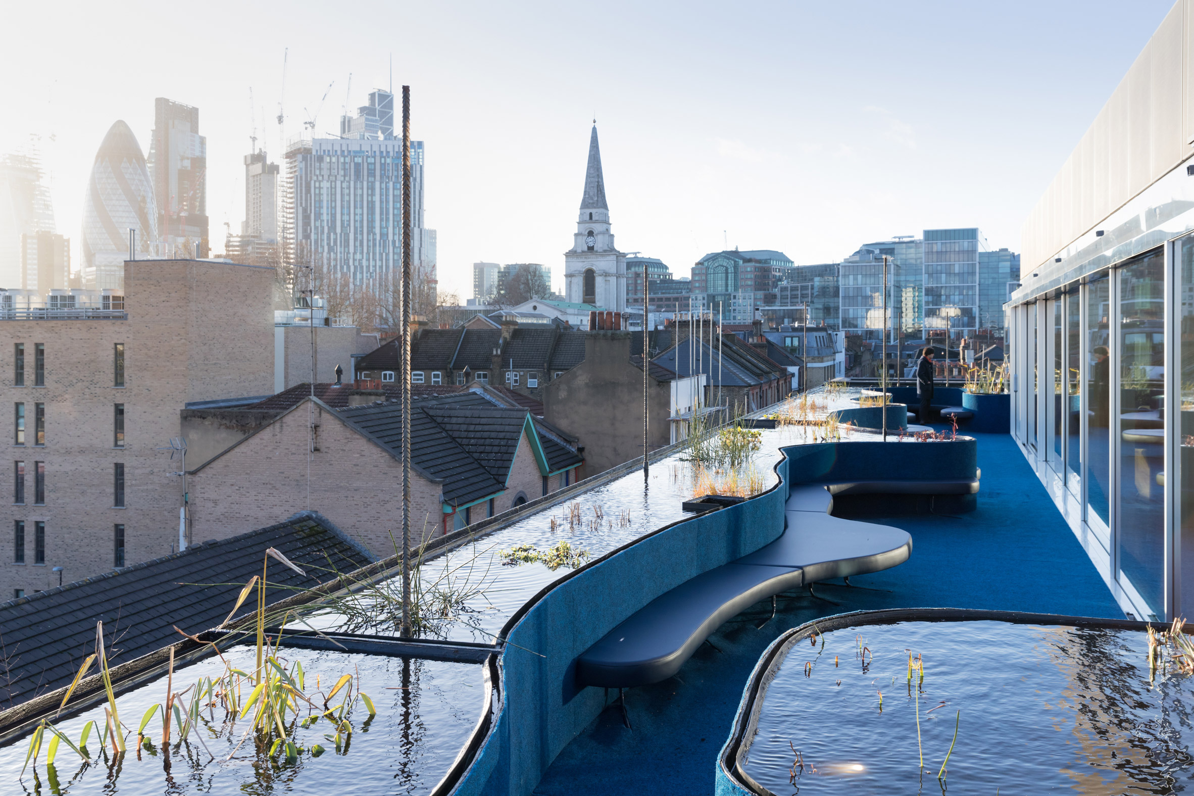 SelgasCano adds roof extension with pools and plants to Second Home offices in London