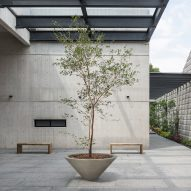 Kosher cookery school in Mexico City features board-marked concrete walls