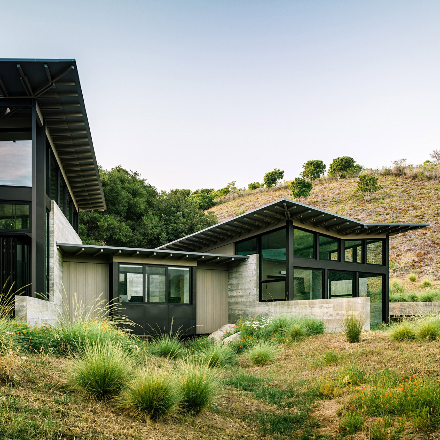 Butterfly roofs top rural house in Carmel by Feldman