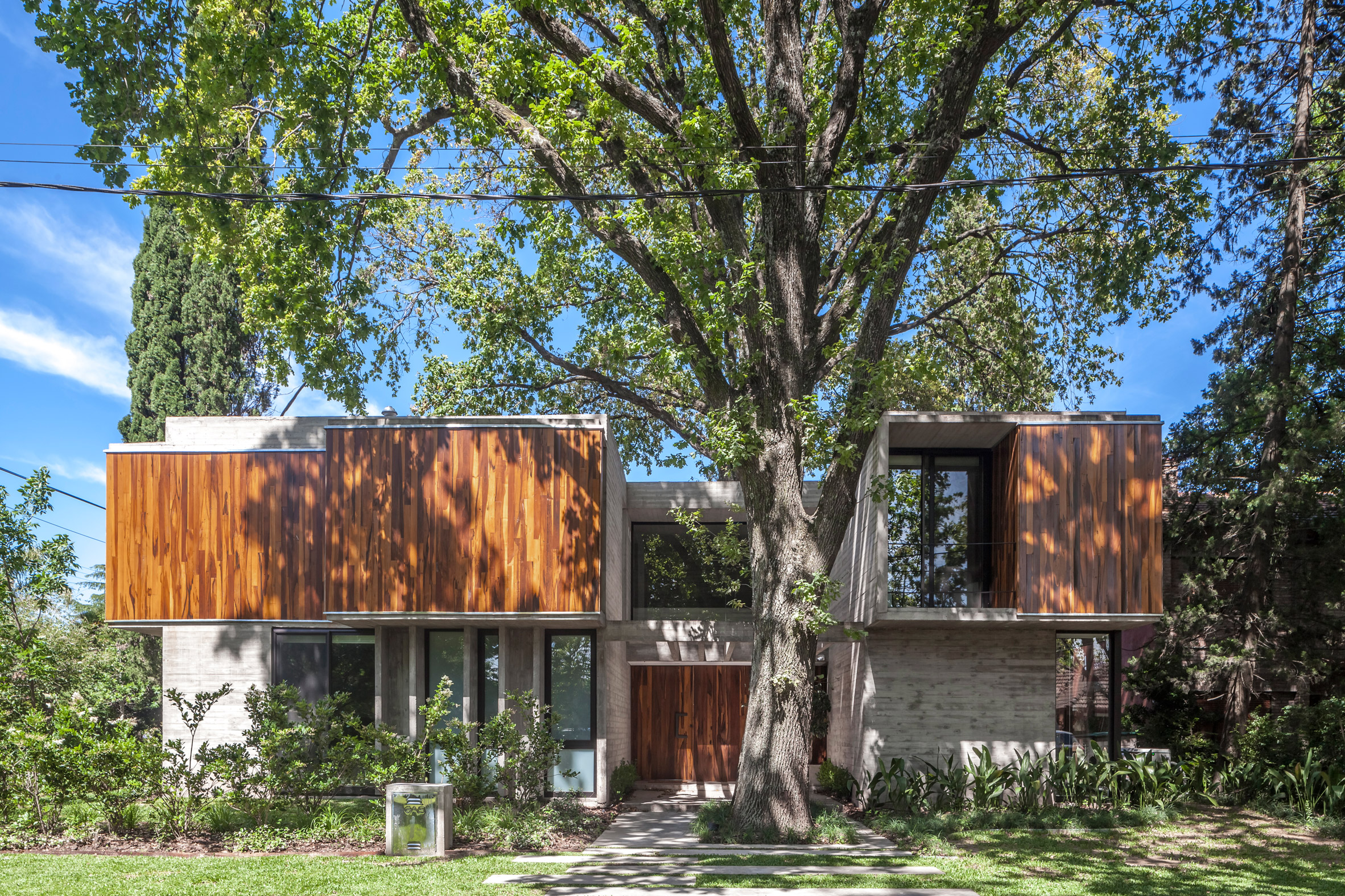 Concrete house in Buenos Aires by Besonías Almeida fits among mature trees