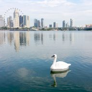 Robotic swans used to monitor quality of Singapore's drinking water