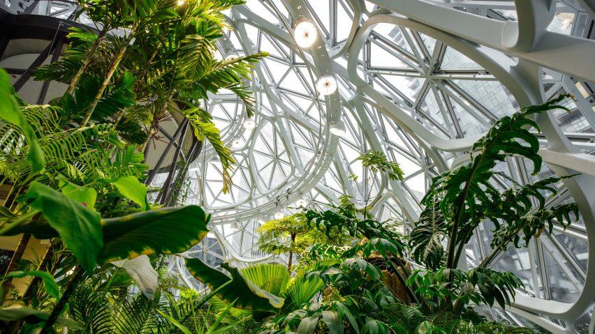 Amazon The Spheres