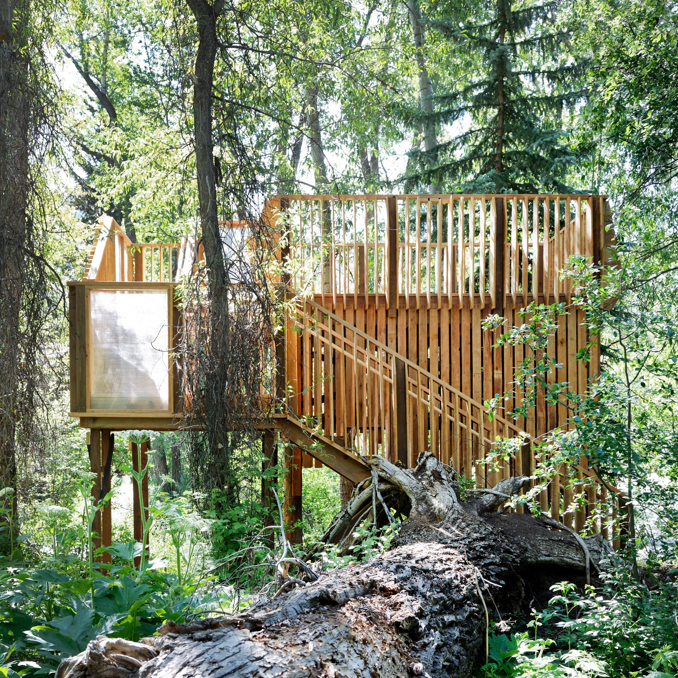 Charles Cunniffe Spruces Up Treehouse In Aspen With Local Assistance
