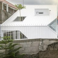 "Fern tree grows through the roof of bright white ""contemporary tropical"" house on Java island"