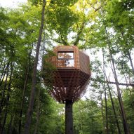 Century-old oak supports treehouse guest room in northern France