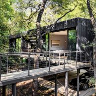 Wernerfield elevates Treebox guest house on wooded site in Texas