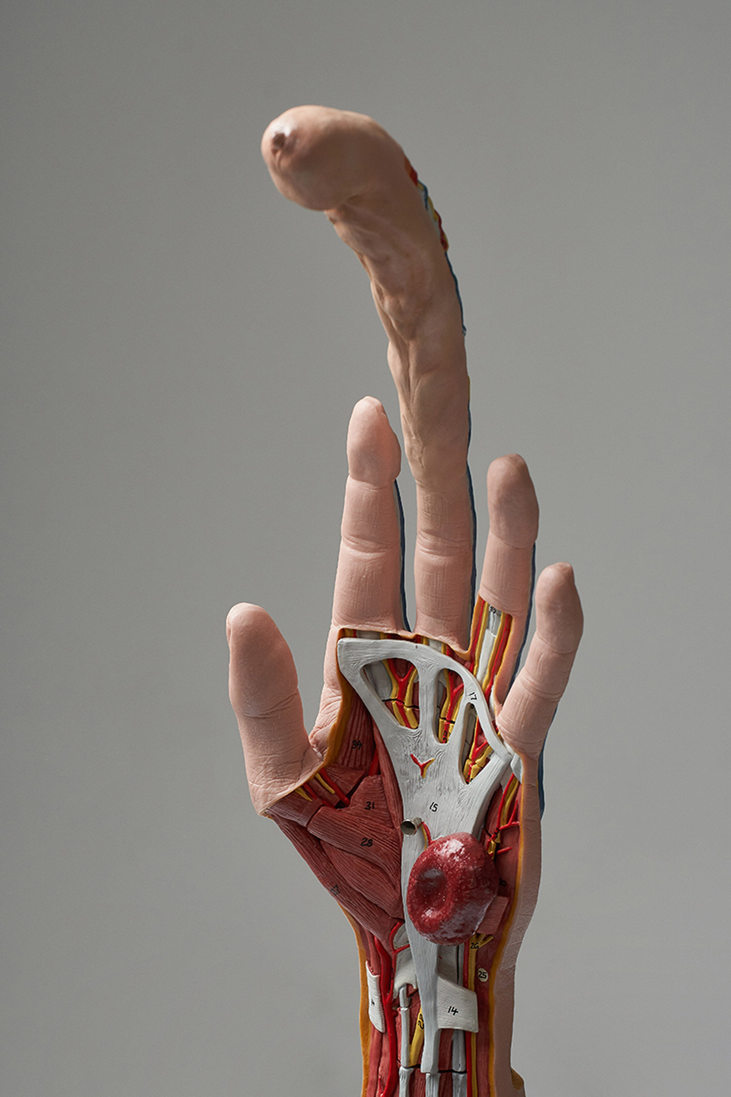 Seeding Finger is a hand-shaped tool for artificial insemination