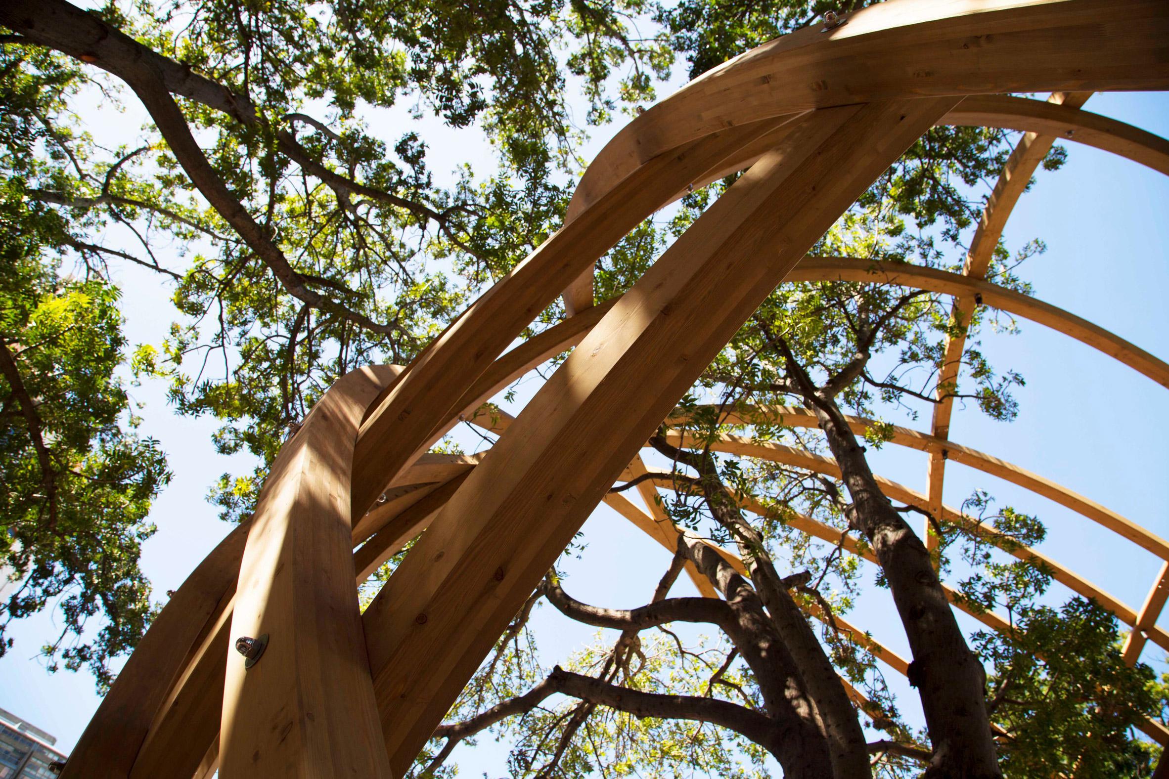 Snøhetta and Local Studio build tribute arch to Desmond Tutu in Cape Town