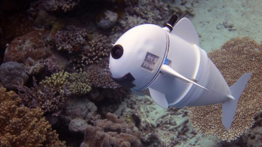 MIT's robotic fish