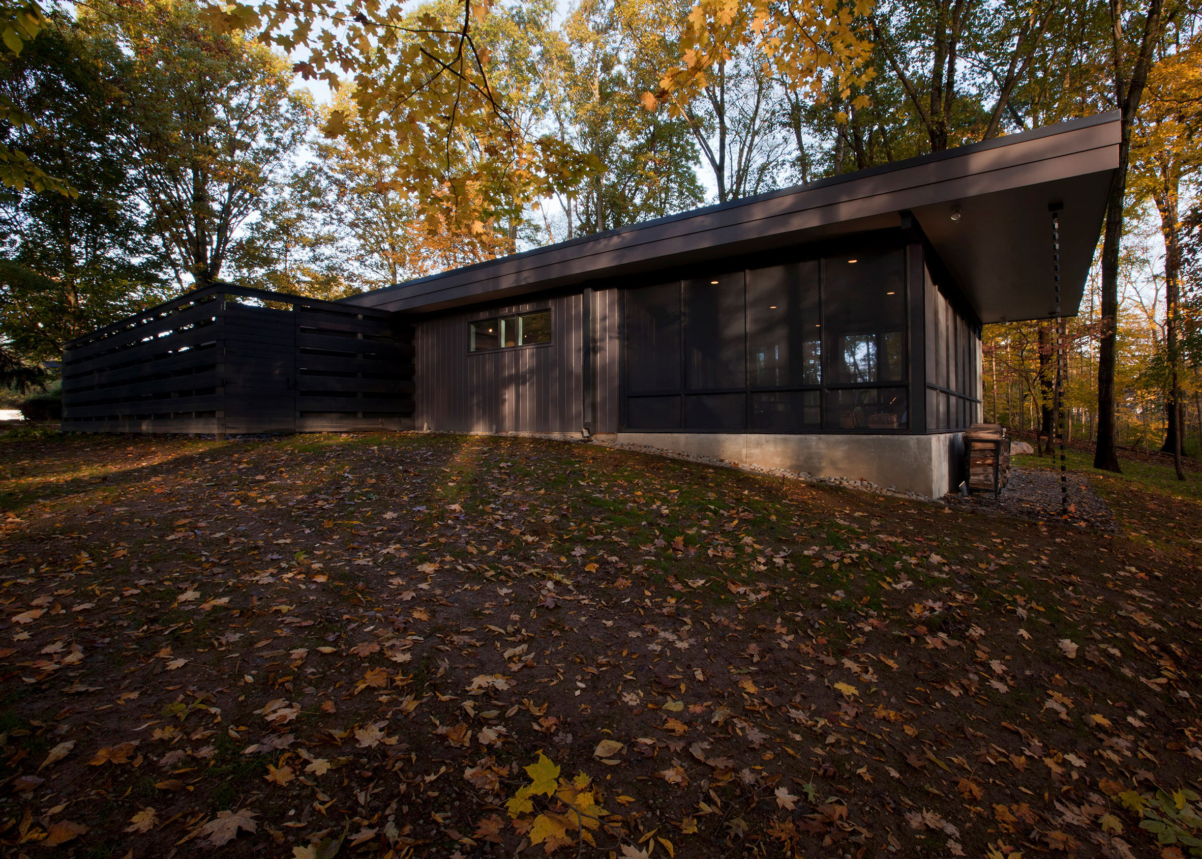 Midcentury Renovation by Haus