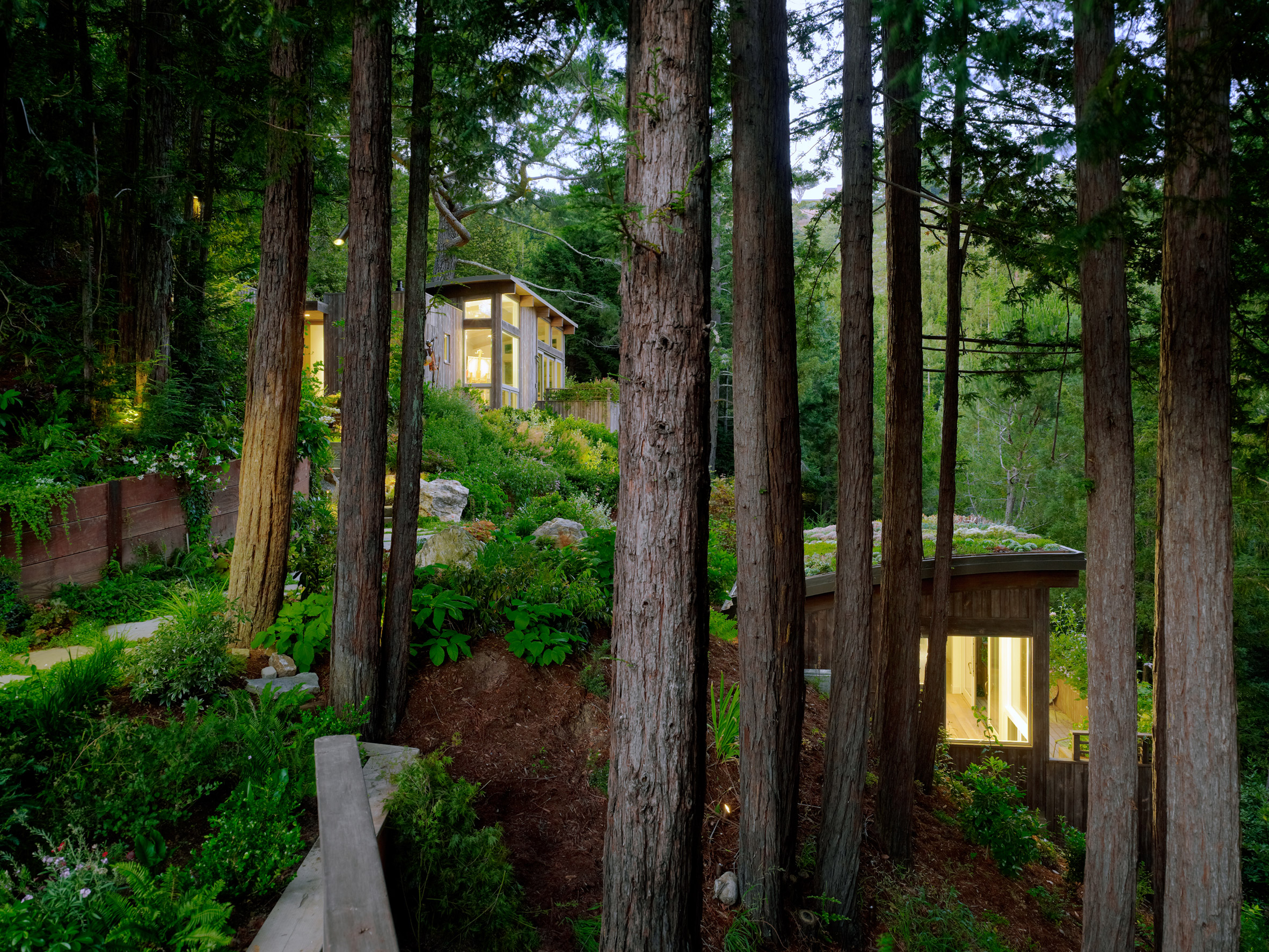 Mill Valley Cabins by Feldman Architecture