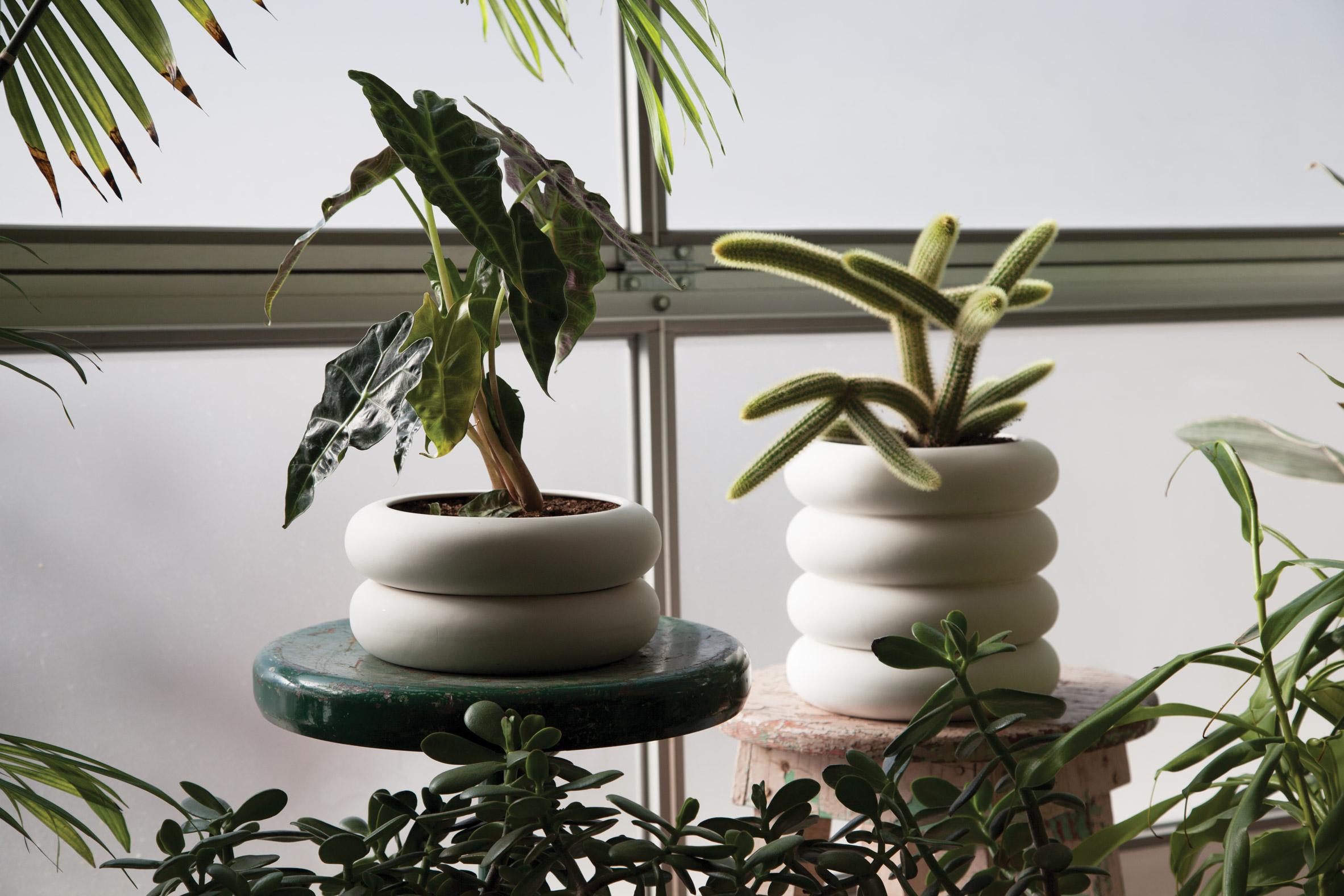 Stacking Planter by Chen Chen & Kai Williams