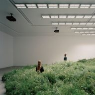 Over 10,000 plants used to create grassland inside Australian Pavilion
