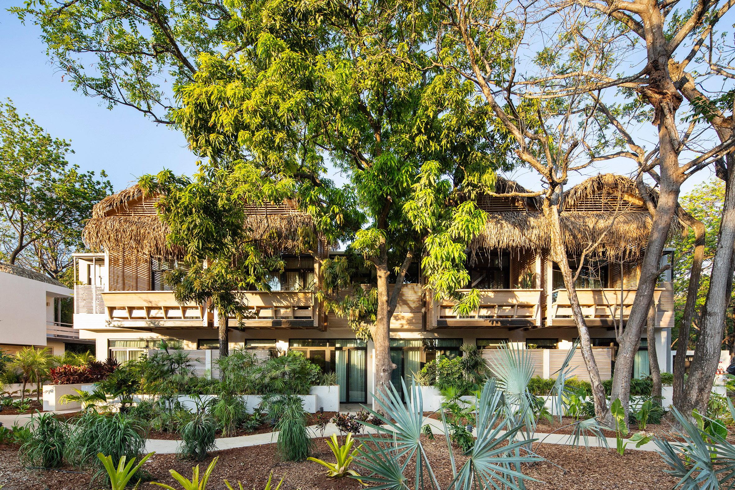 Studio Saxe transforms Costa Rican lodge into The Gilded Iguana surf resort