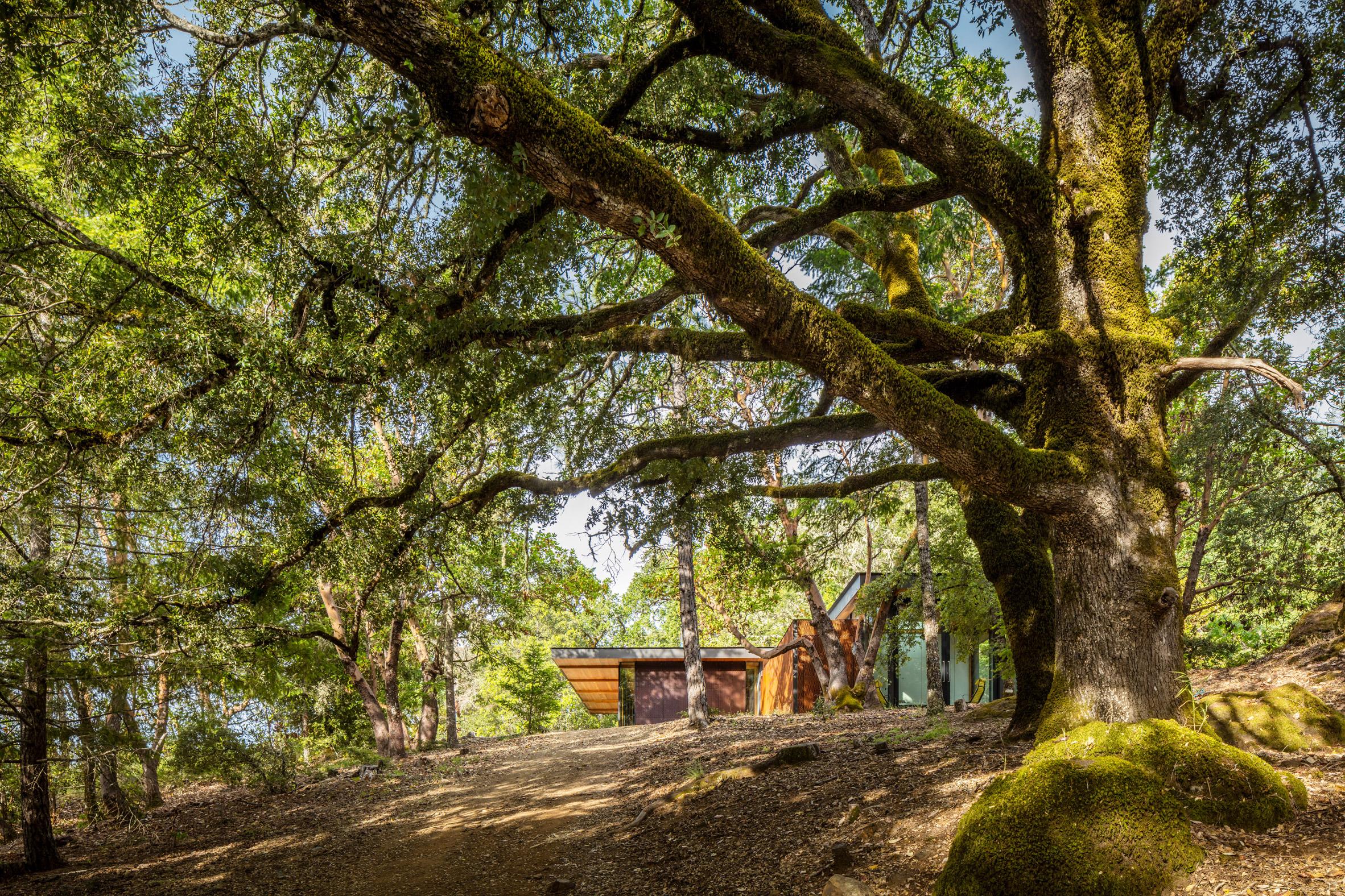 High Horse Ranch by Kieran Timberlake