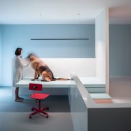 Beijing house by Atelier About Architecture features a storey for a disabled dog