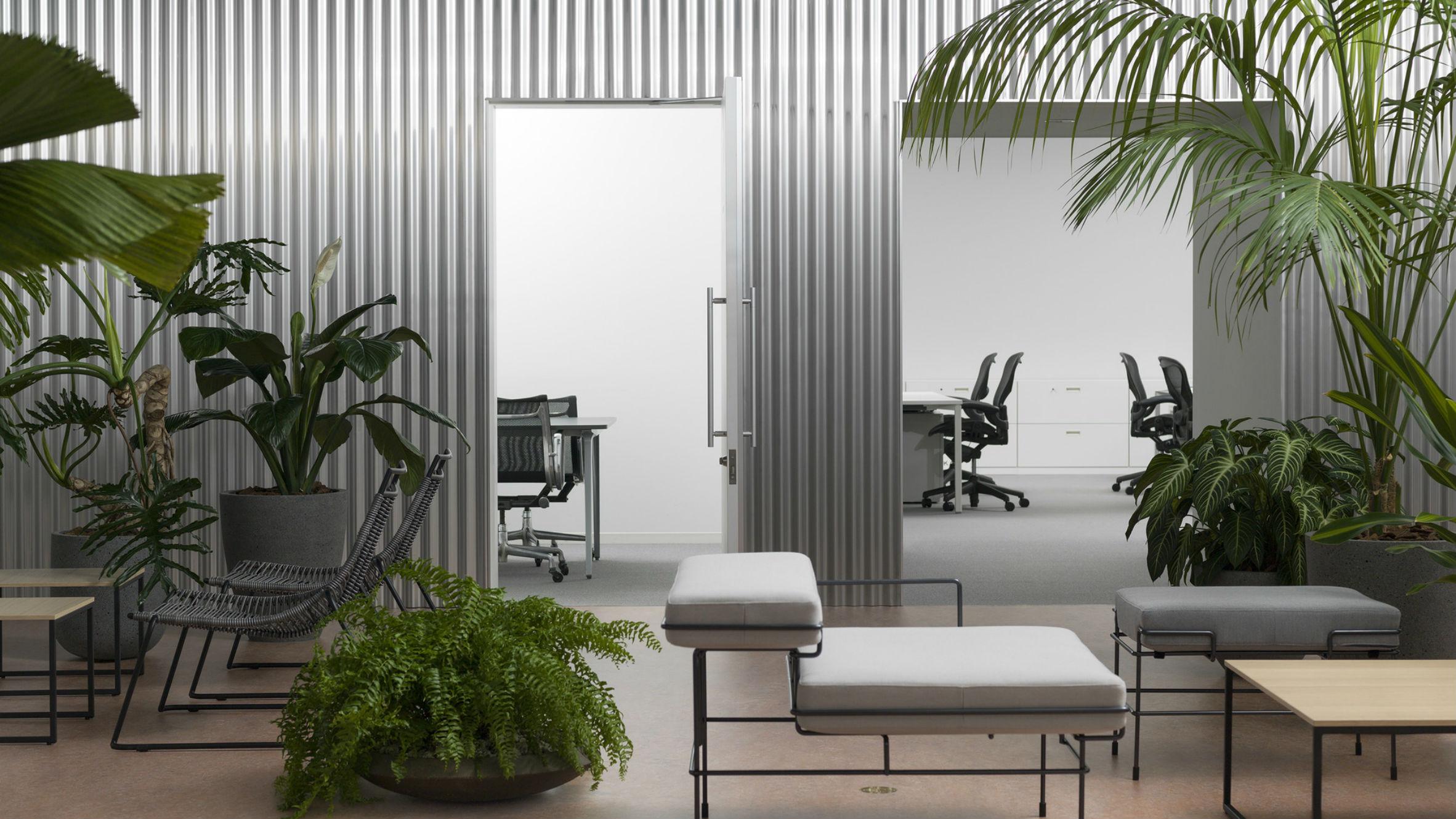 Office With a Patio, Tokyo, Japan, by Shogo Onodera/Tsukasa Okada