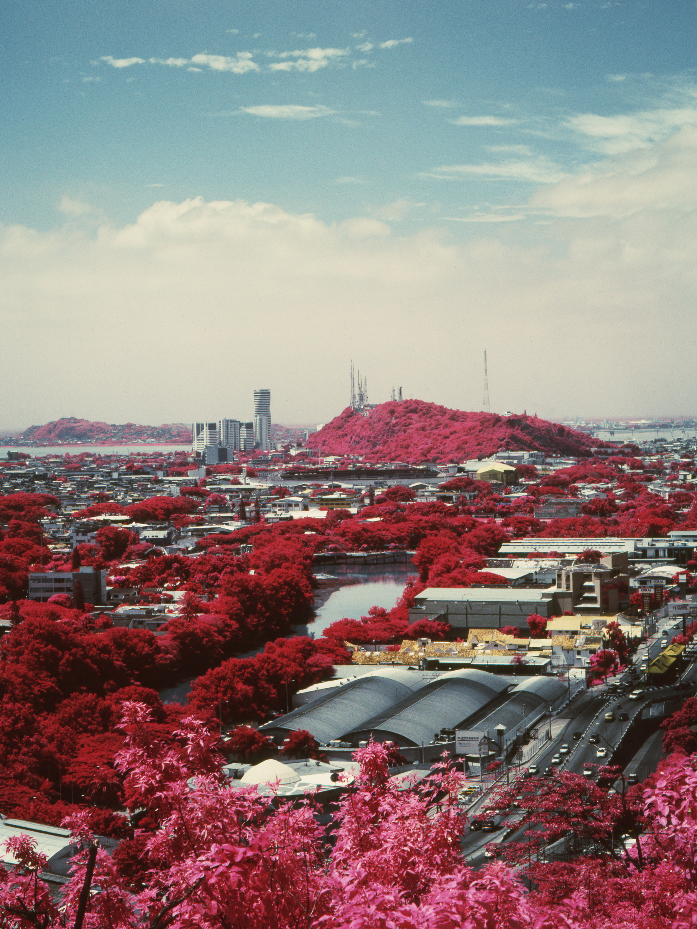 Vicente Muñoz's infrared photos highlight the battle between city and nature