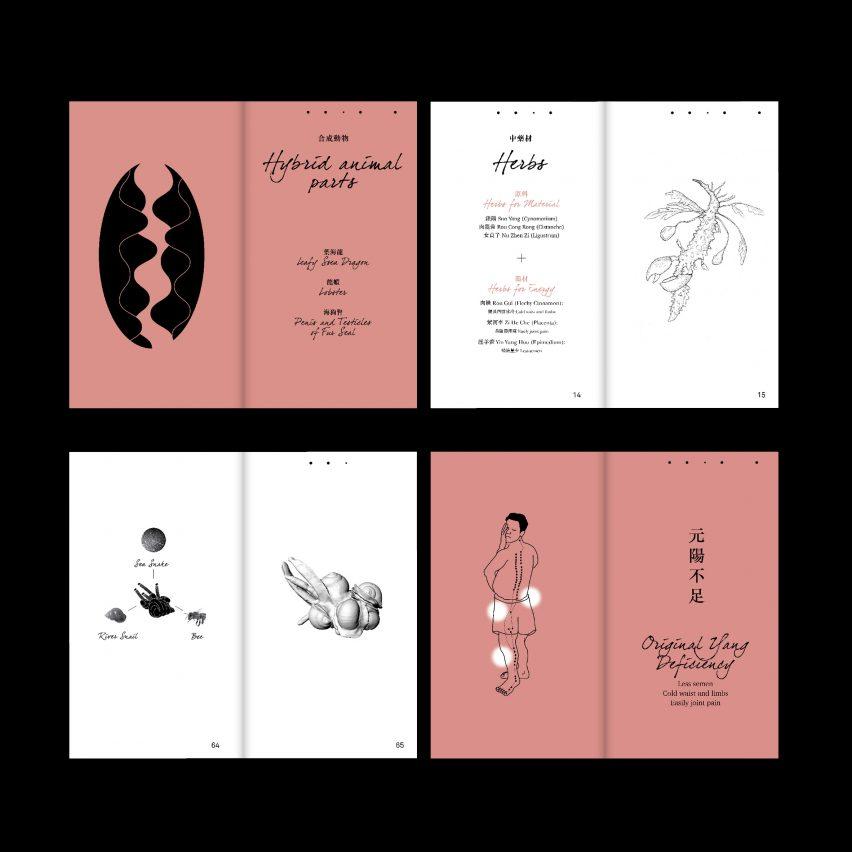 Tiger Penis Project by Kuang-Yi Ku
