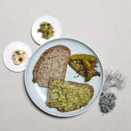 Julia Schwarz uses lichen to create food for after the apocalypse