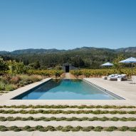 Zinfandel by Field Architecture
