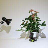 "MIT ""cyborg botany"" researcher builds plant-robot hybrid"