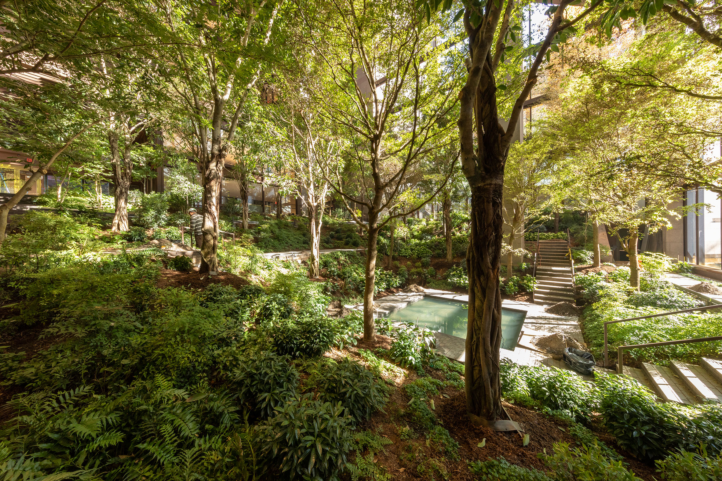 Landscape architecture in the Ford Foundation Atrium, New York City