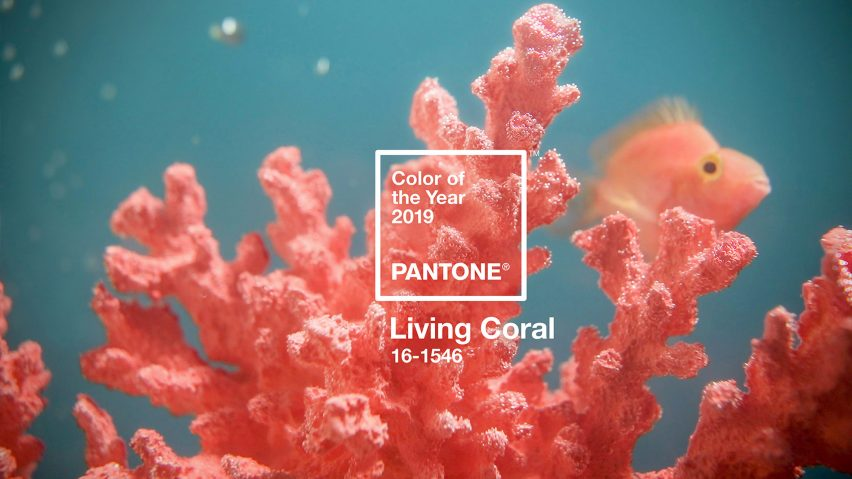 living coral color of the yea 2019 according to pantone.