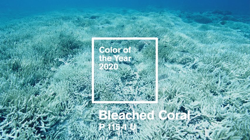 Beazley Designs of the Year 2020 nominees include Bleached Coral by Jack and Huei