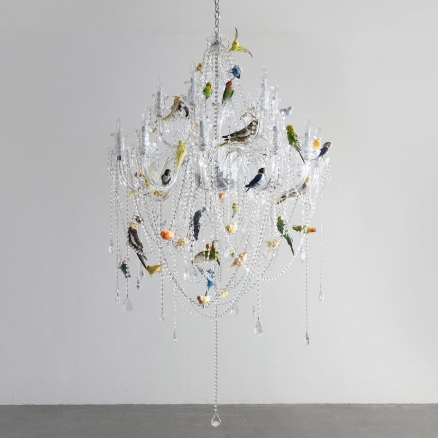Sebastian Errazuriz exhibition at New York's R & Company features taxidermy Bird Chandelier