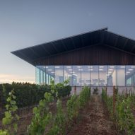 Glazed tasting room by Waechter Architecture overlooks Furioso Vineyards in Oregon