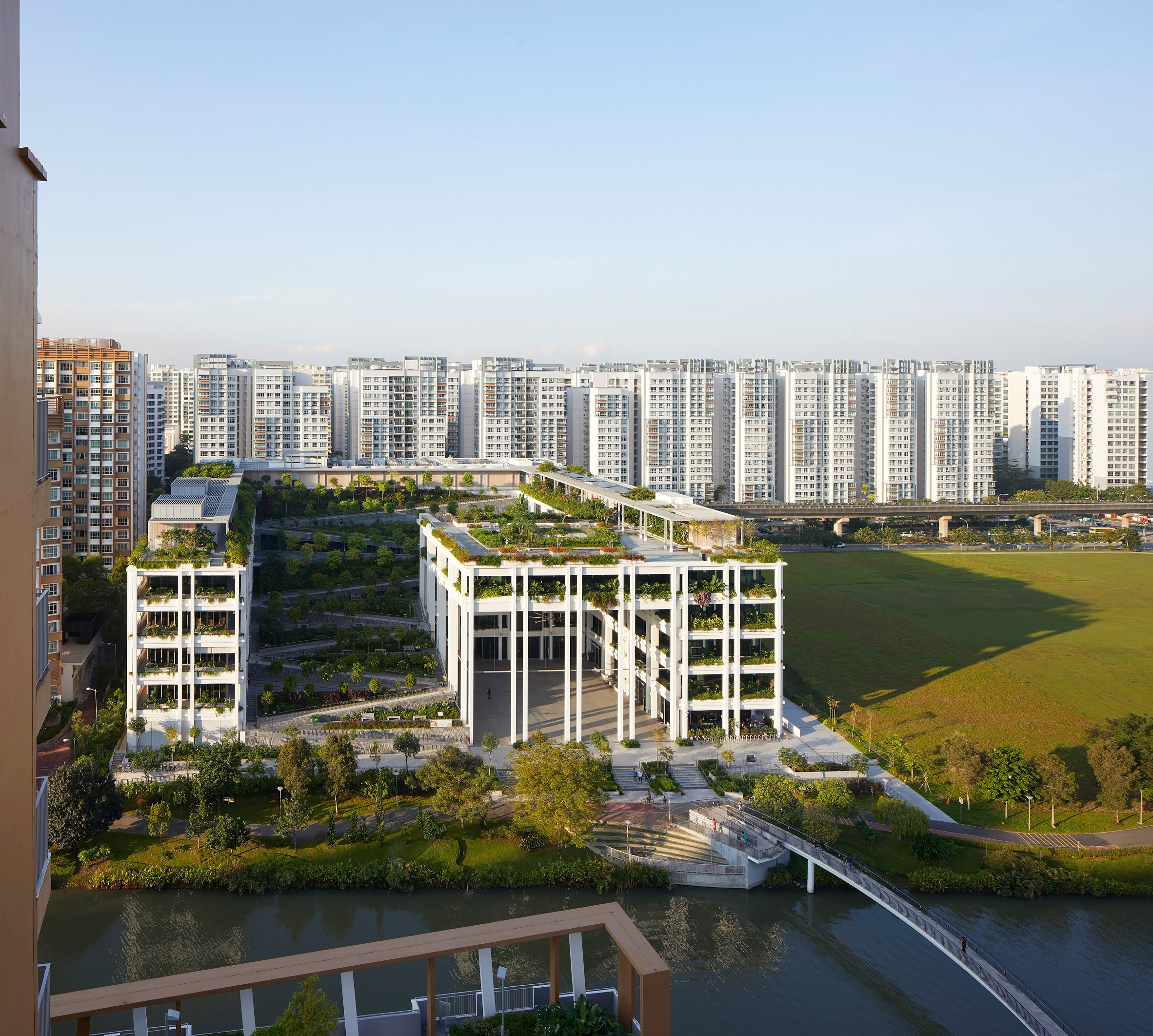 Oasis Terraces by Serie and Multiply Architects