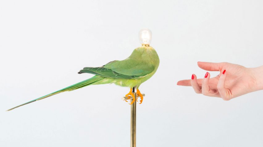 Single Perch Lamp by Sebastian Errazuriz