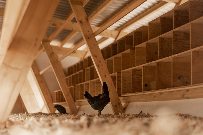 House of Chickens by SO Architecture