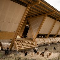 Five chicken coops around the world