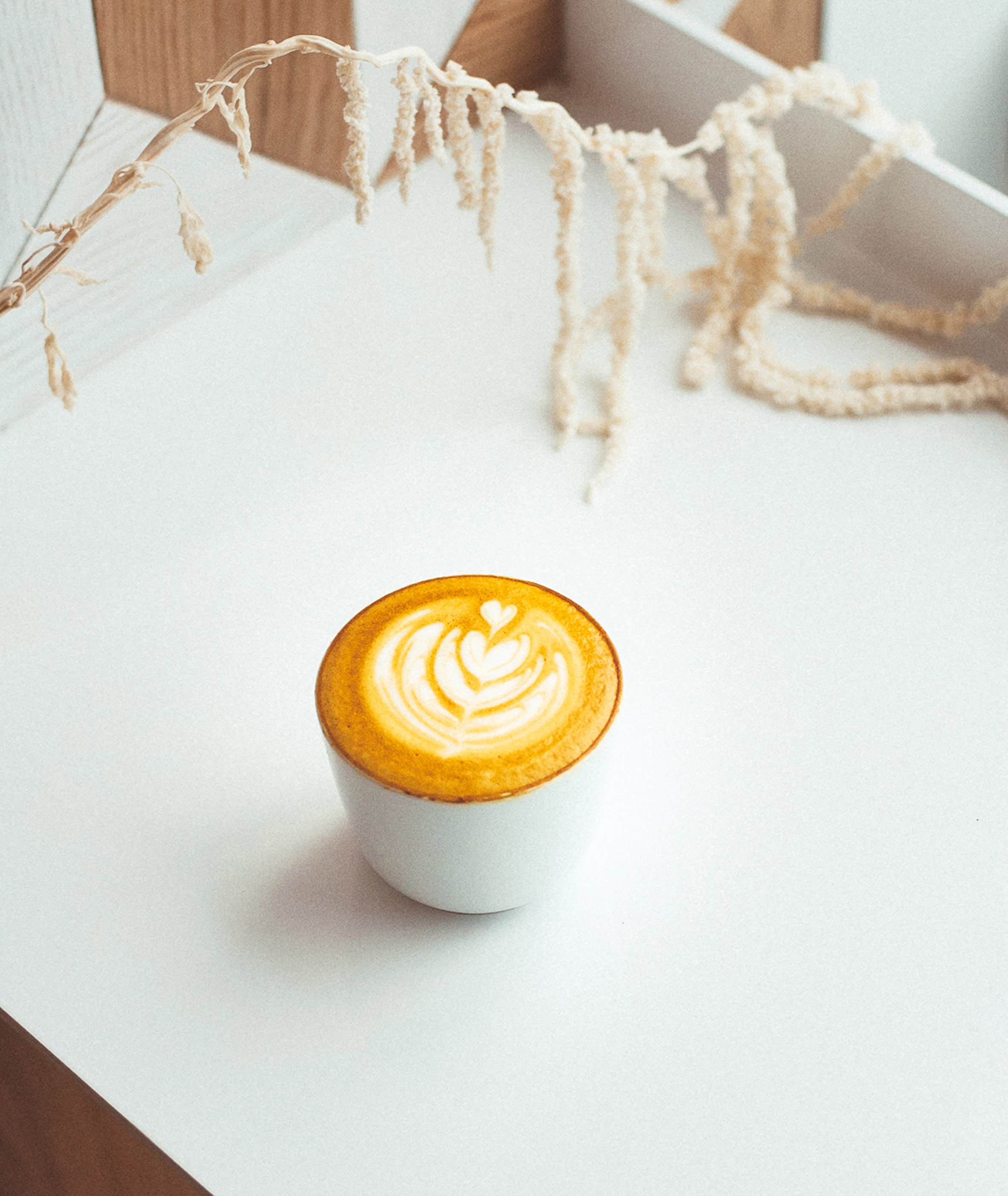 Milky's coffee bar by Batay-Csorba