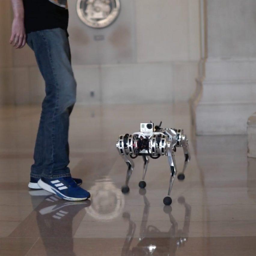 MIT Mini Cheetah robot backflip