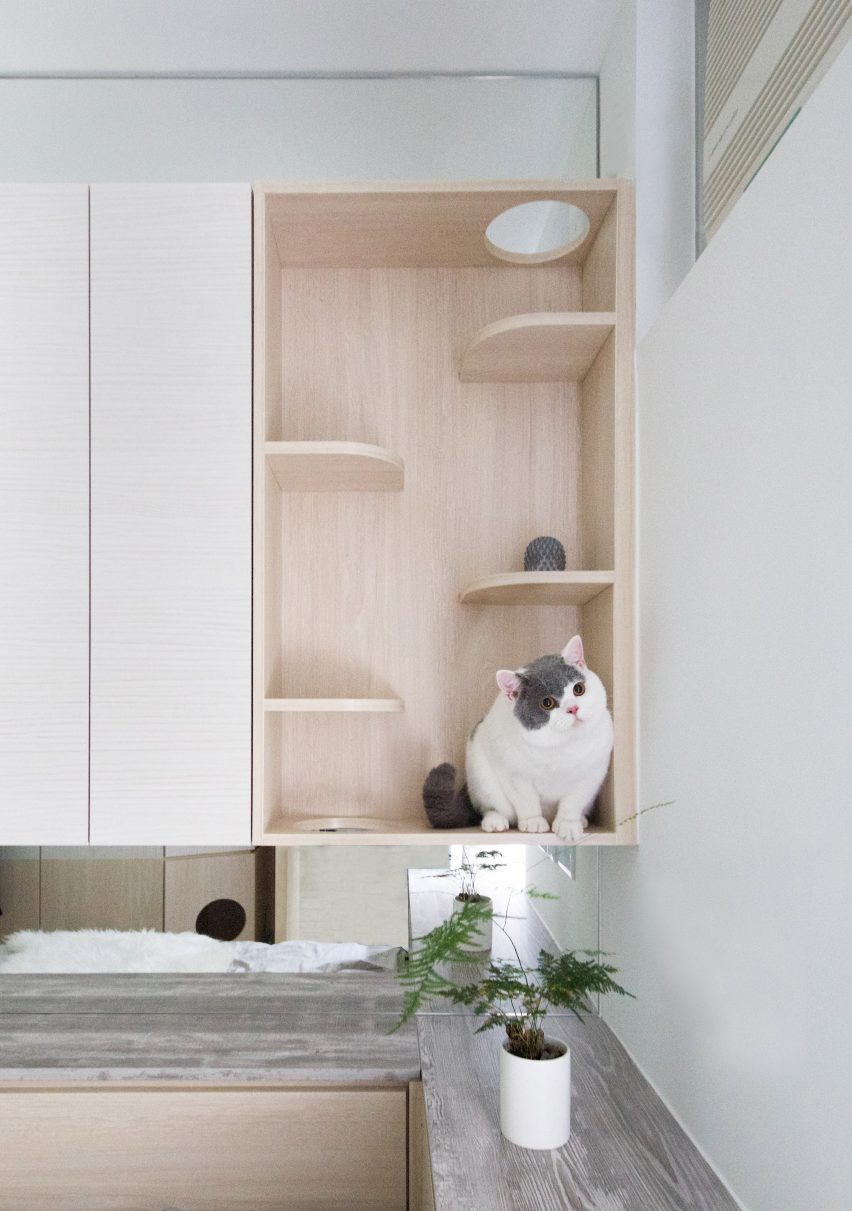 Pets Playground apartment in Hong Kong by Sim-Plex Design Studio