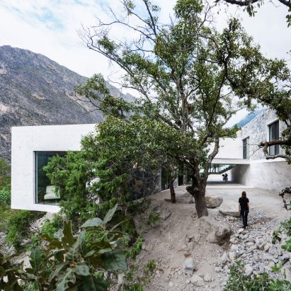 Casa Bedolla by P+0 Arquitectura