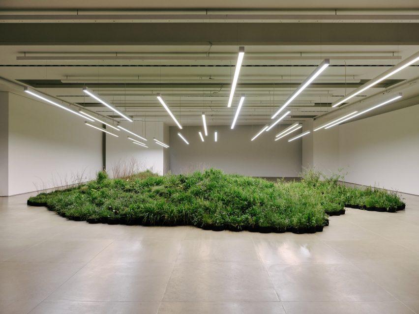 Adjacent Field by Linda Tegg and Jil Sanders at Milan design week